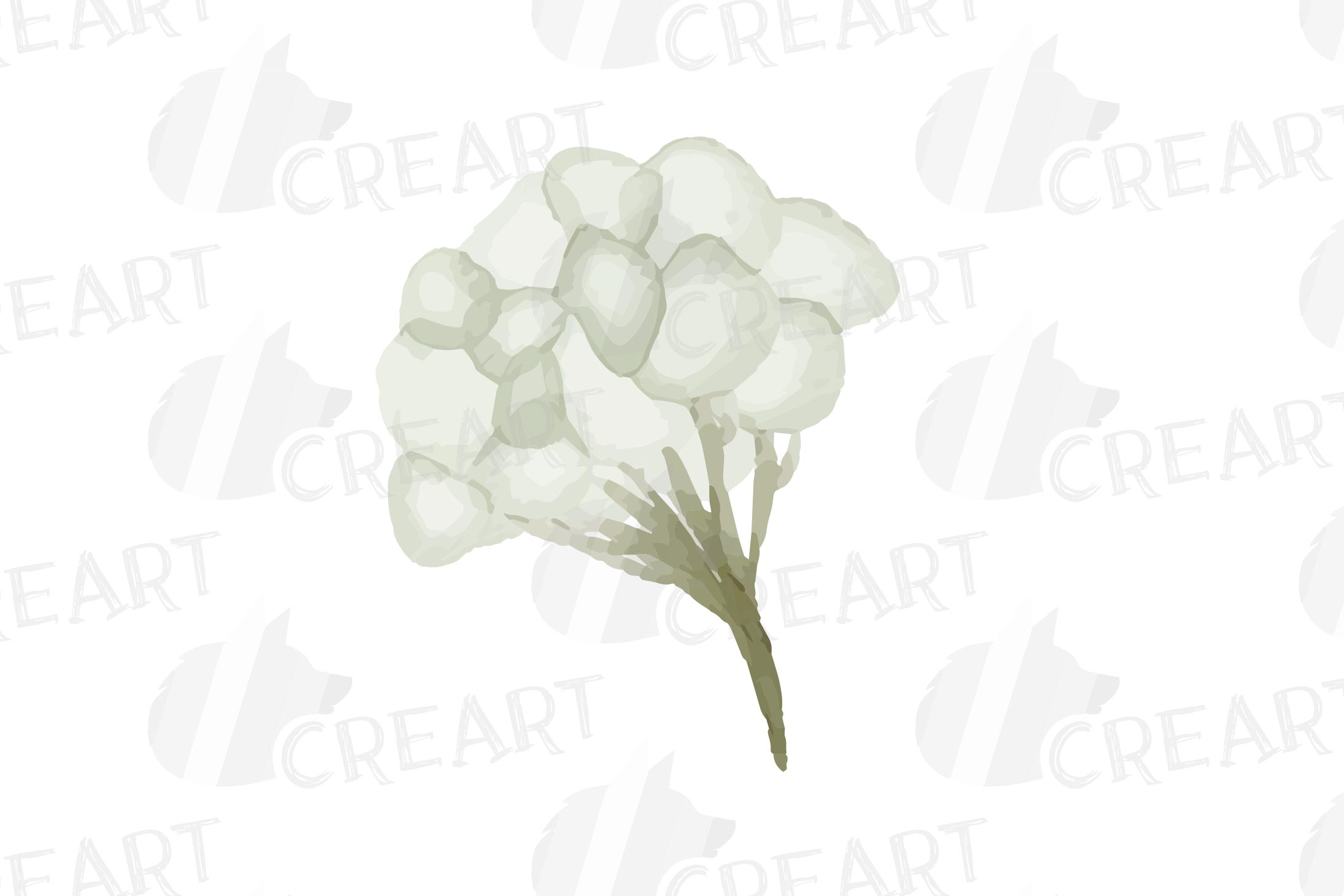 Cotton bolls and fir branch leafy autumn and winter decor example image 14