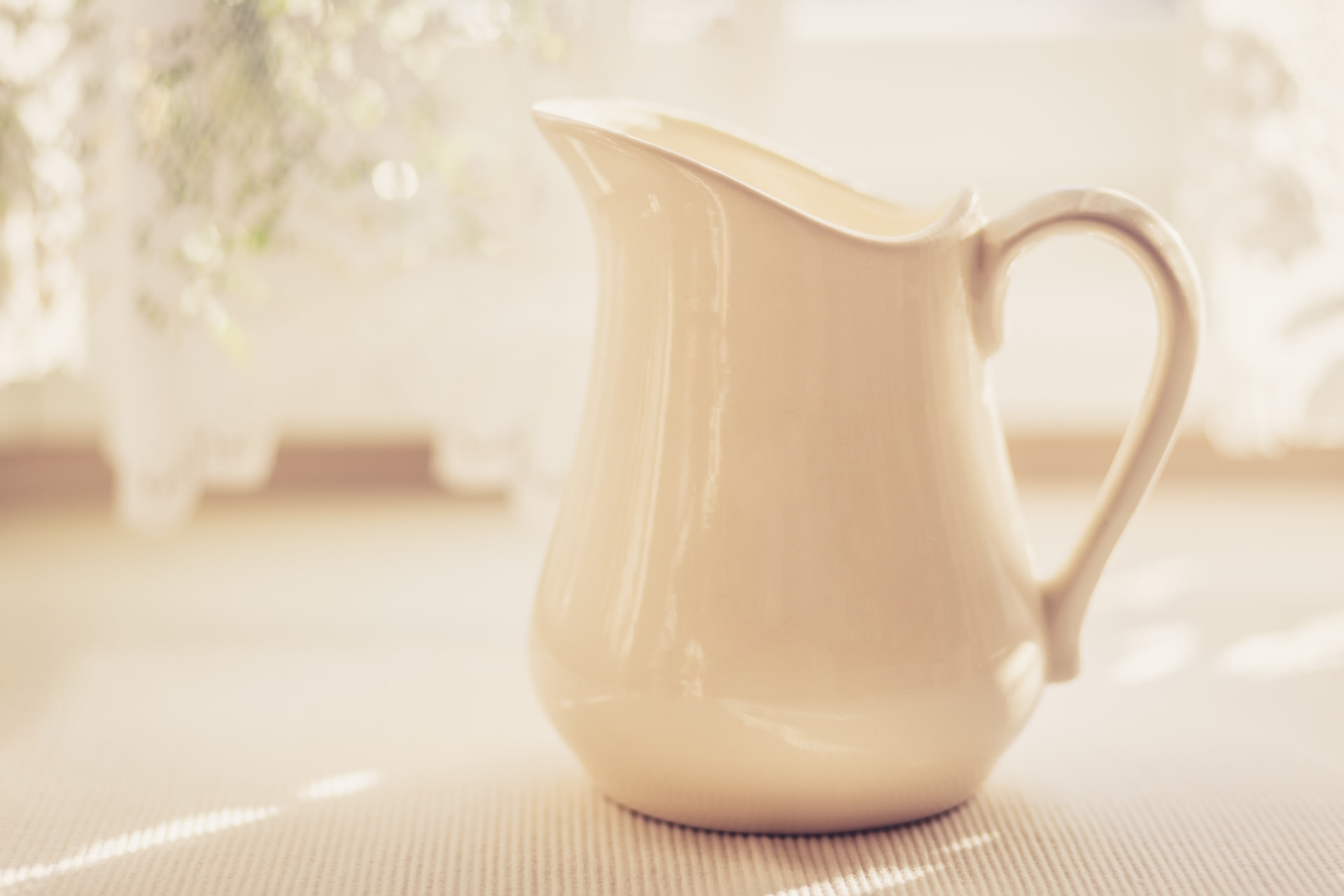 Milk Jug in Soft Light - Warm Tone