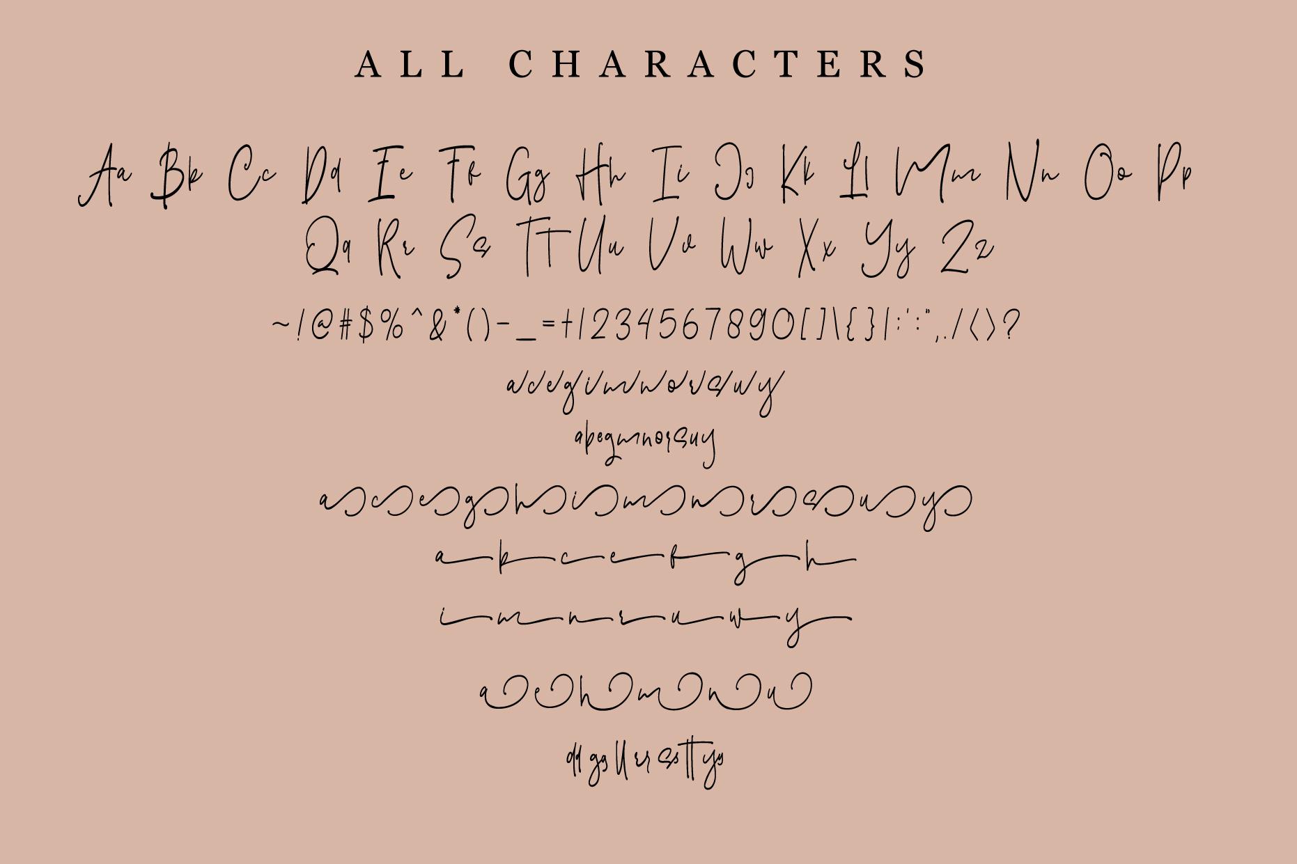 Hitterlove | Lovely Script example image 4