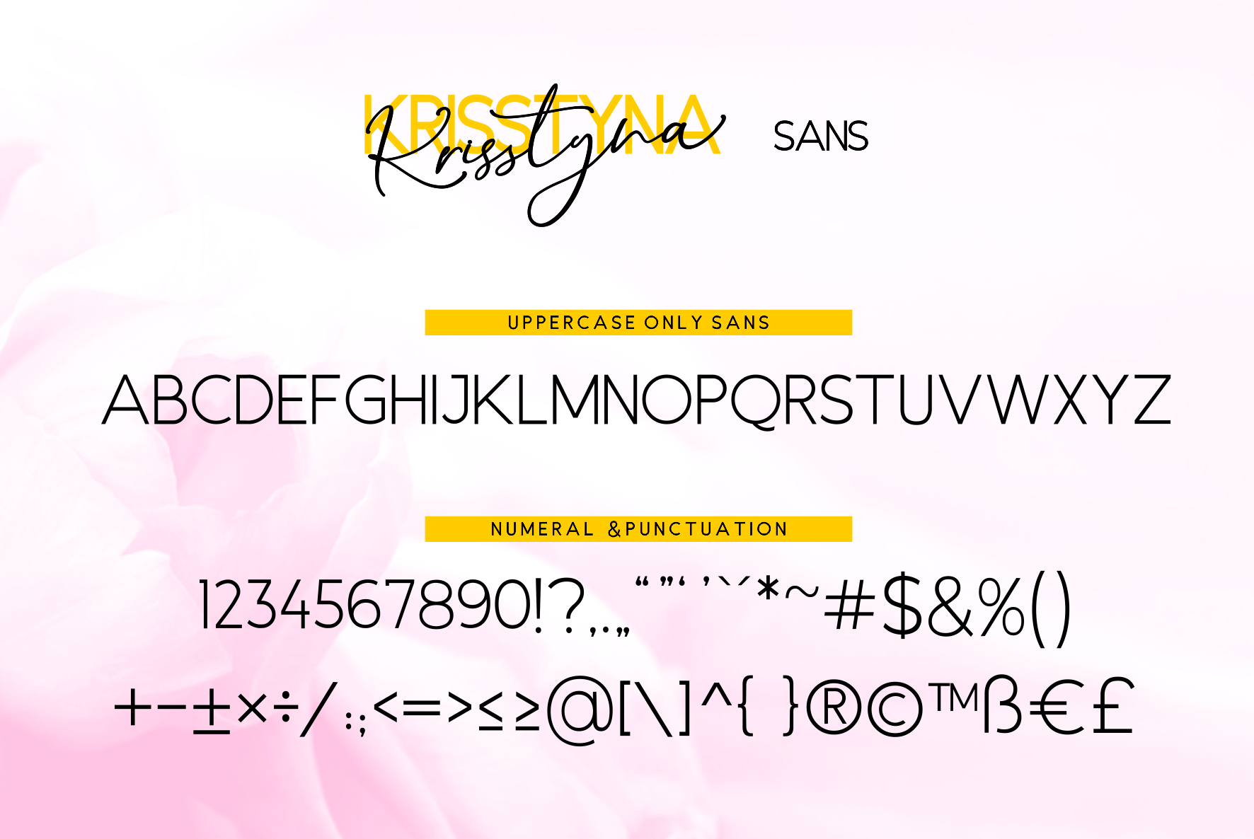 Krisstyna Font Duo example image 10