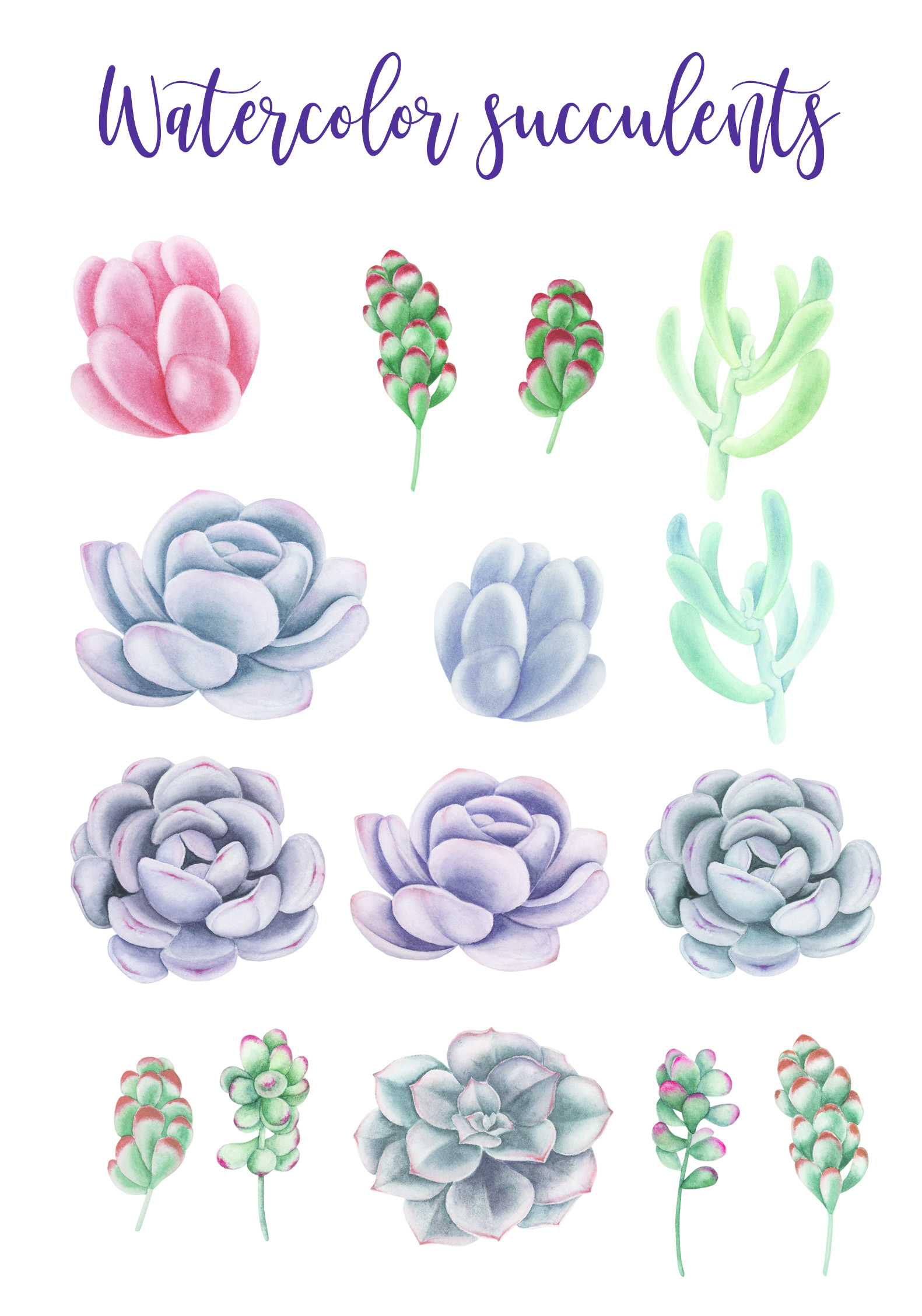 Watercolor Succulents Clipart example image 2