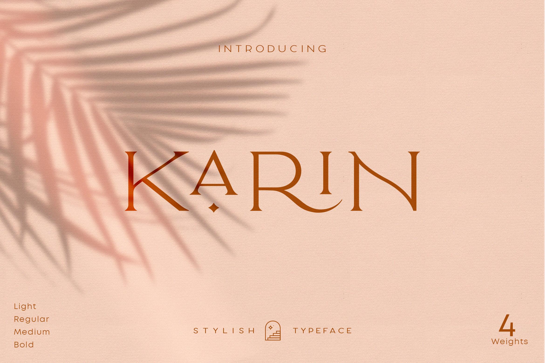 Elegant Karin - Fashion Stylish Typeface example image 1