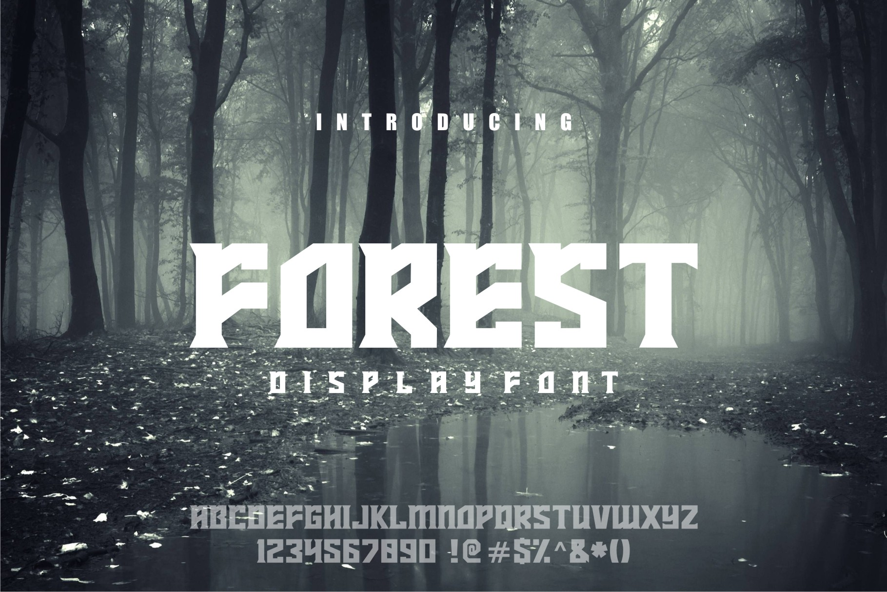 FOREST display font example image 5