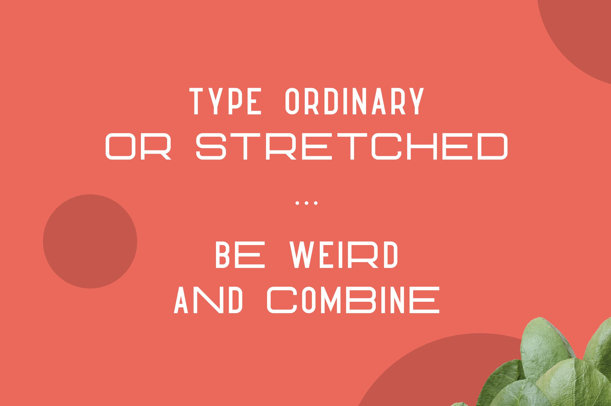 Hippo Sans Serif | 3 styles example image 3
