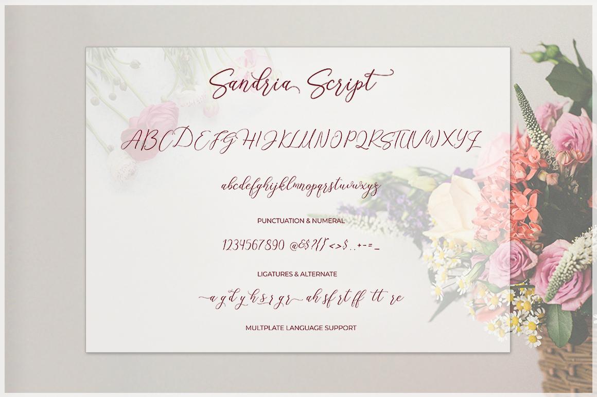 Sandria Script example image 9