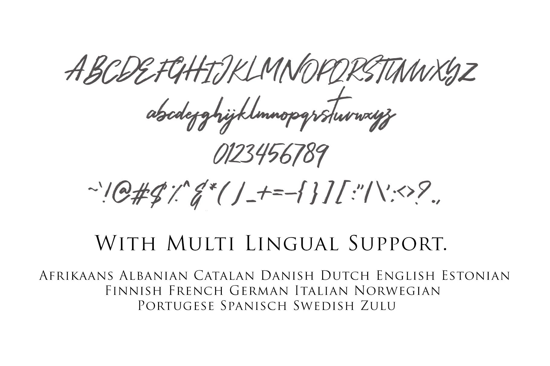 Hariston - Classy Signature Font example image 5