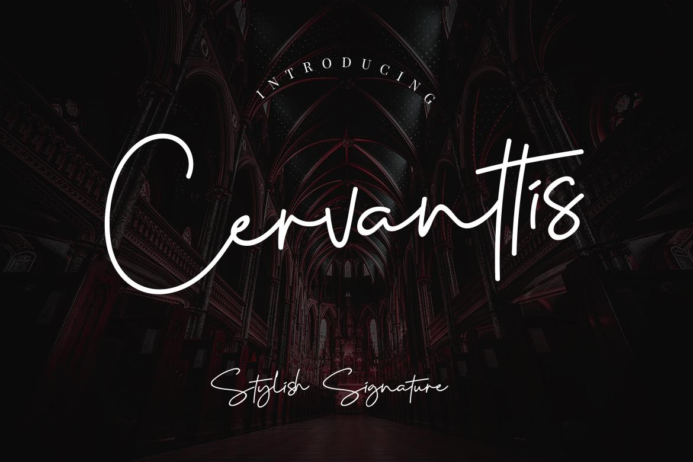 Cervanttis Signature Script example image 1