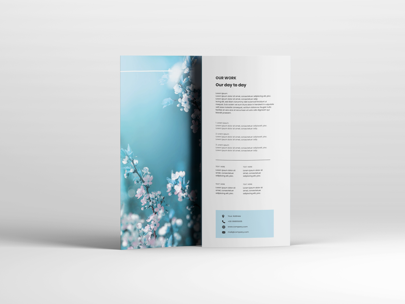 A4 Trifold Mockups V3 example image 16