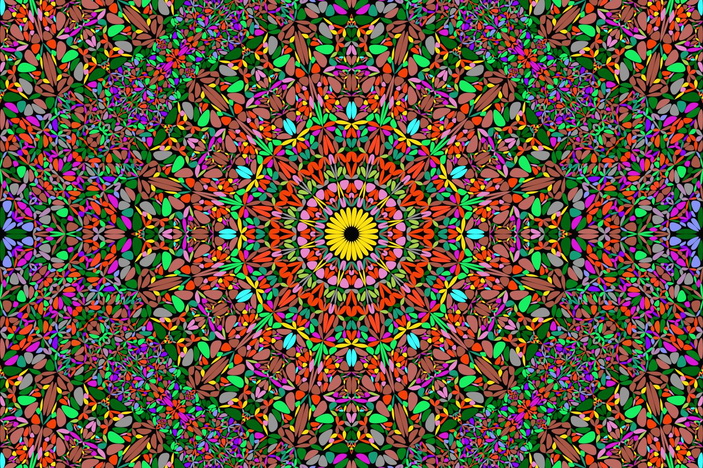 48 Seamless Floral Mandala Patterns example image 2