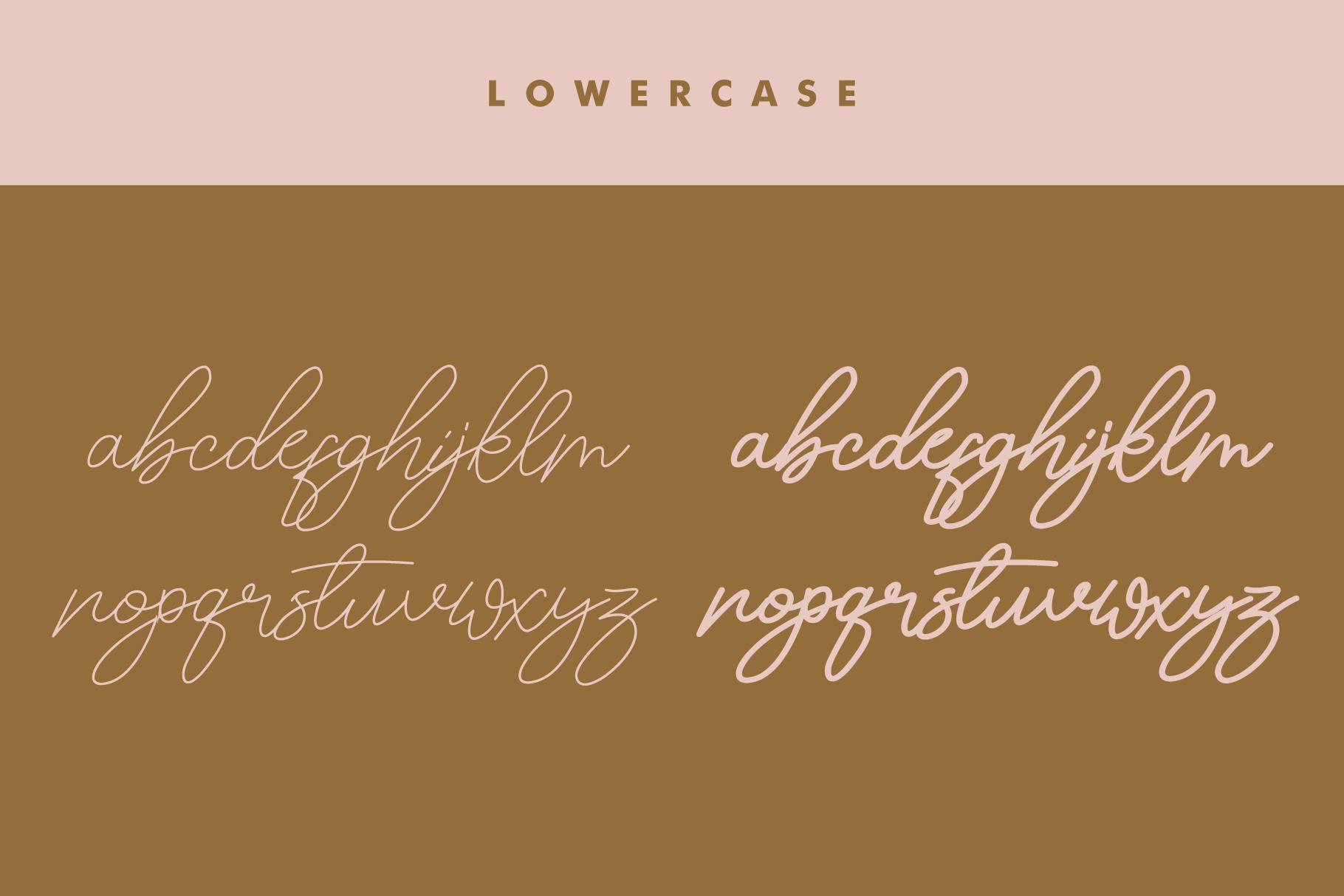 Maldonis Monoline Script example image 11