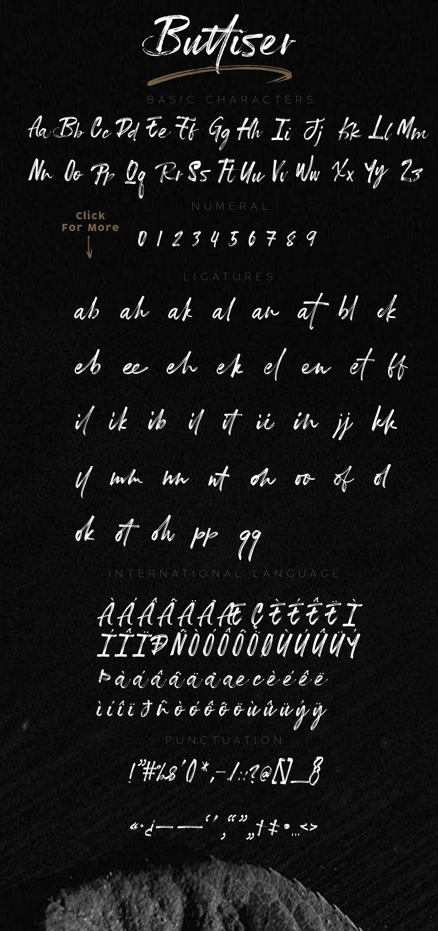 Buttiser Brush Font example image 11