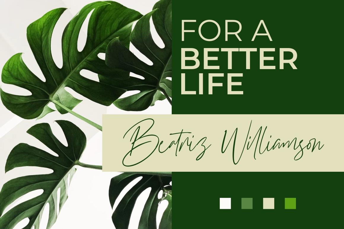 Williamson - Luxury Signature Font example image 4