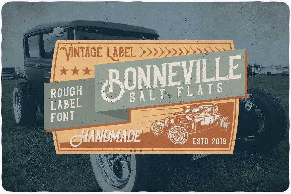Bonneville example image 5