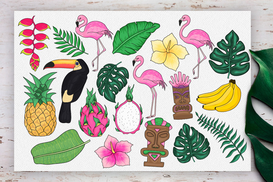 Tropics forever! Vector set example image 5