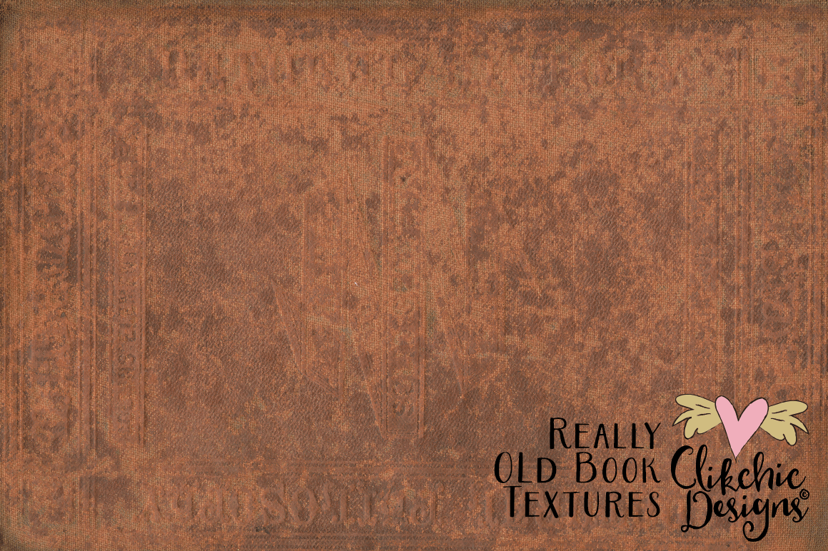 Grunge Book Textures - Really Old Book Textures example image 6