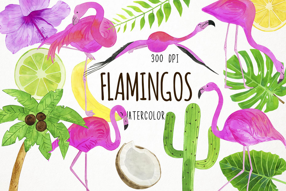Watercolor Flamingo Clipart, Flamingo Clip Art, Flamingo PNG example image 1