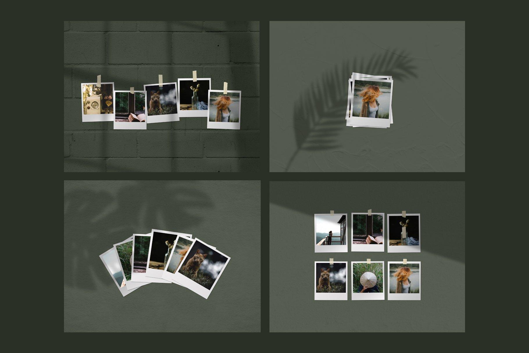 Mini Mood Board - Polaroids example image 3