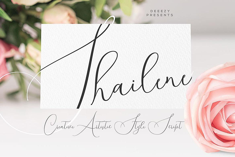 Shailene Script Font example image 1