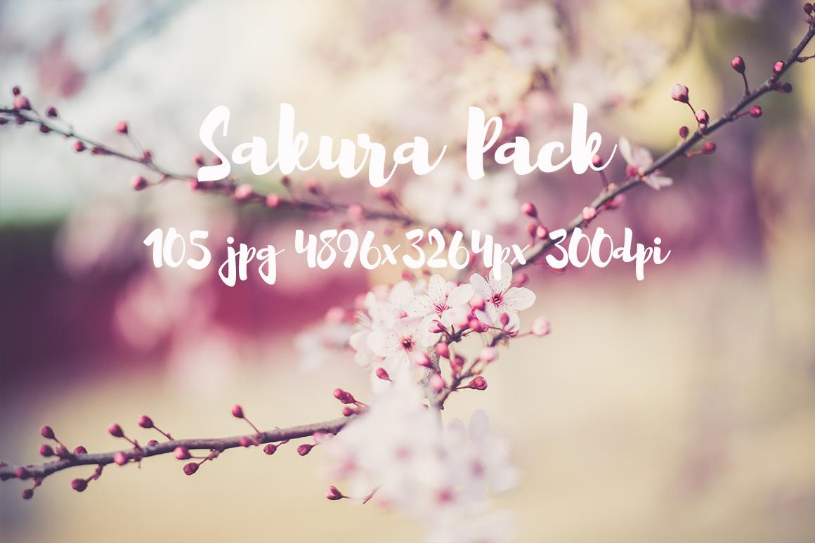 sakura photo pack example image 13