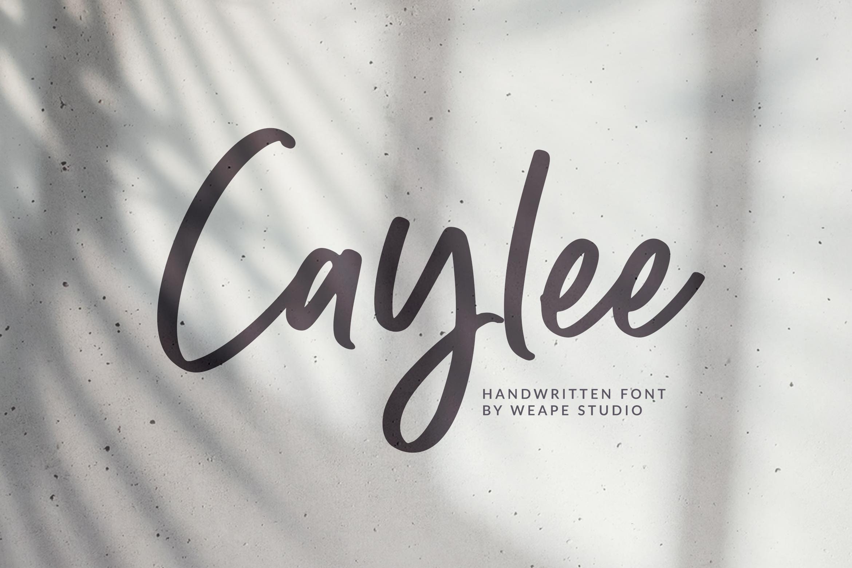 Caylee Script example image 1