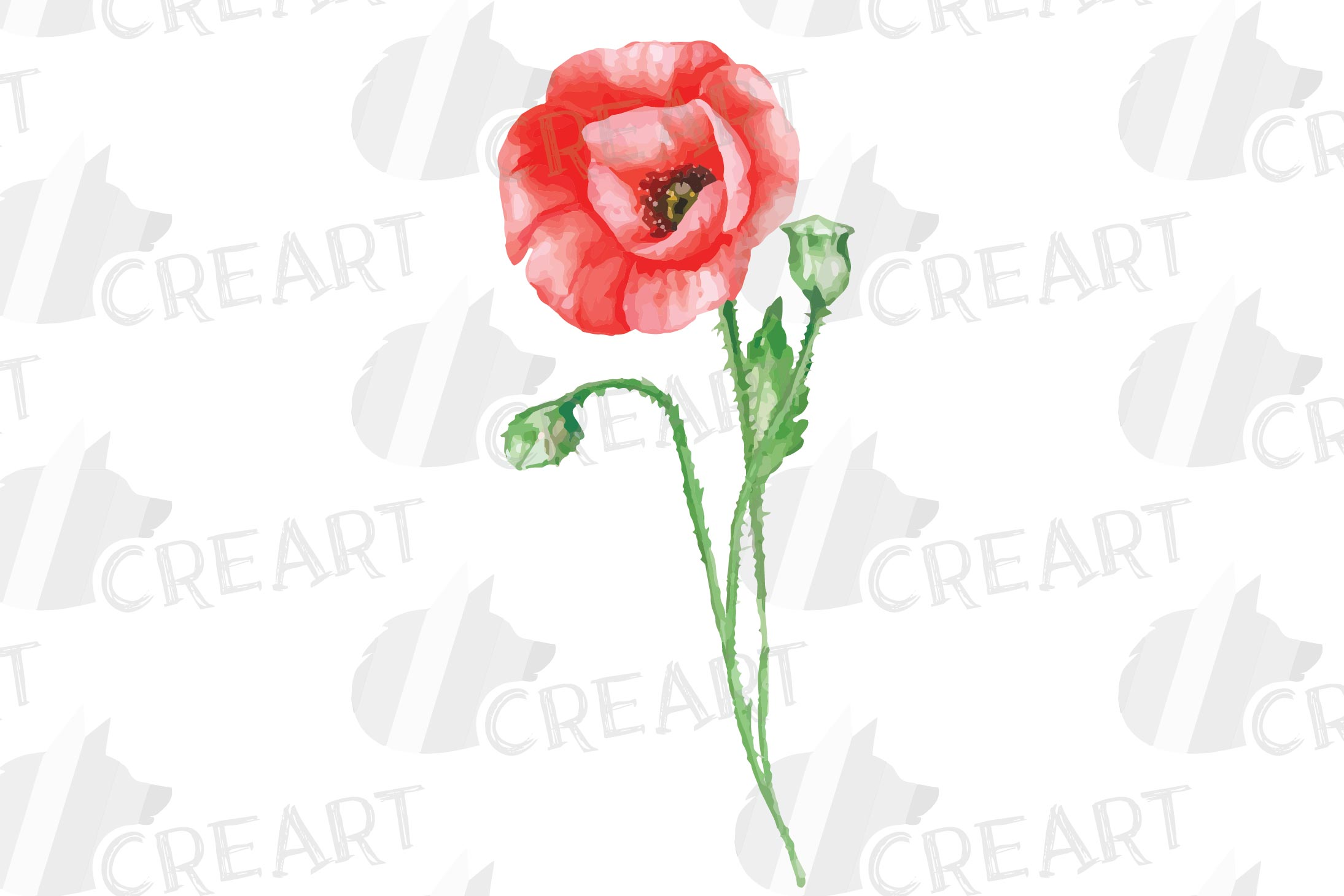 Watercolor red poppy flower and leaf decor clip art. Poppies example image 5