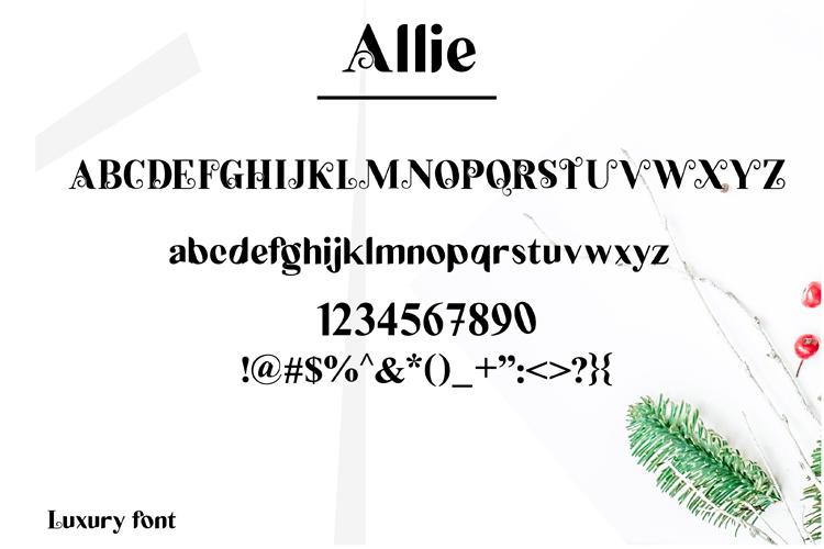 Allie example image 3
