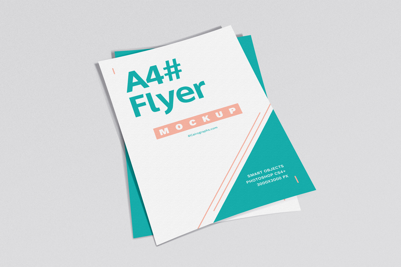 Posters & Flyers Mockups Vol.2 example image 5