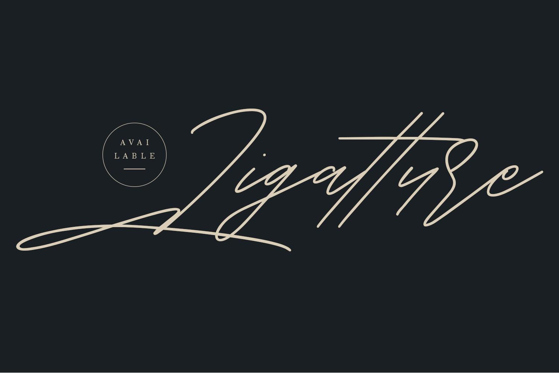 Shaloems Handwritten Signature Font example image 2