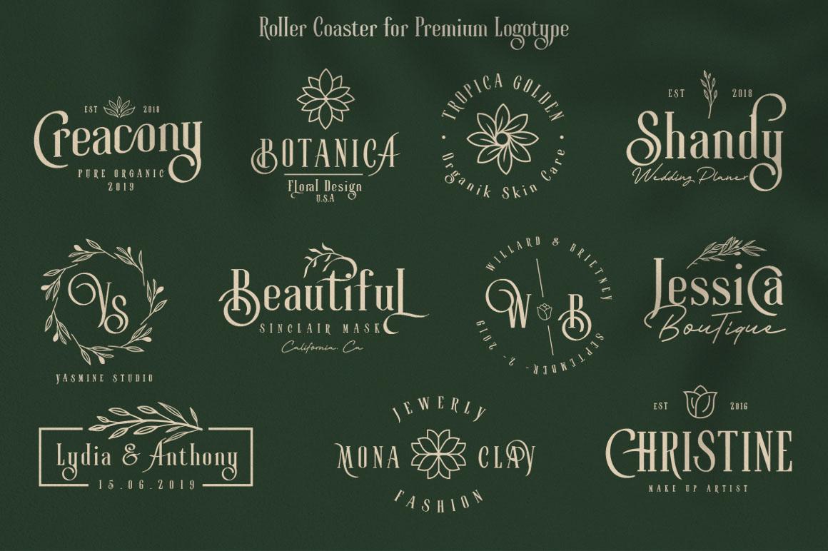 Roller Coaster Elegant Serif Extra example image 9