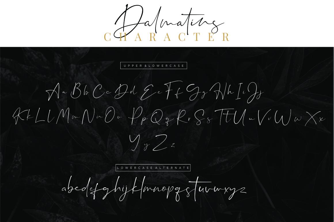 Dalmatins // Elegant Signature Font example image 14