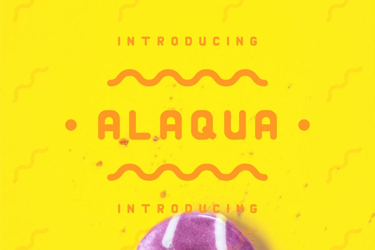 Alaqua example image 2