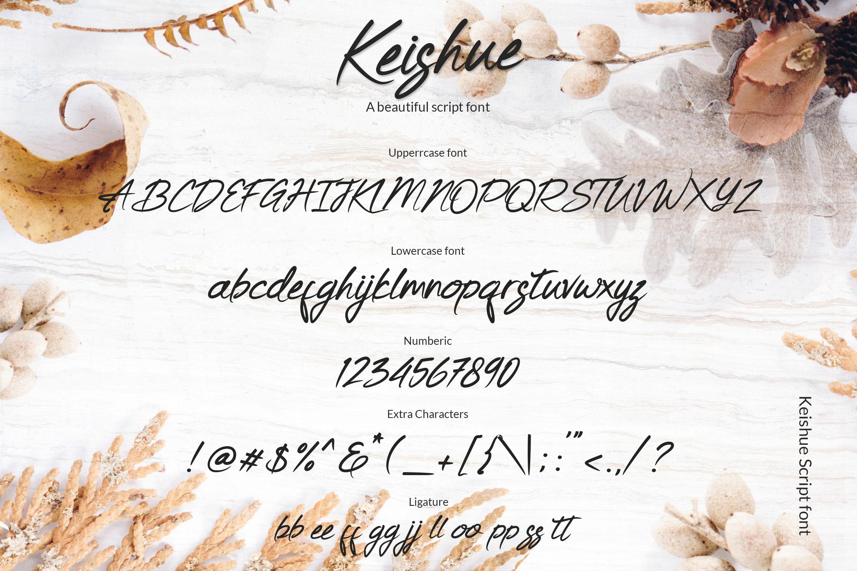 Keishue example image 7