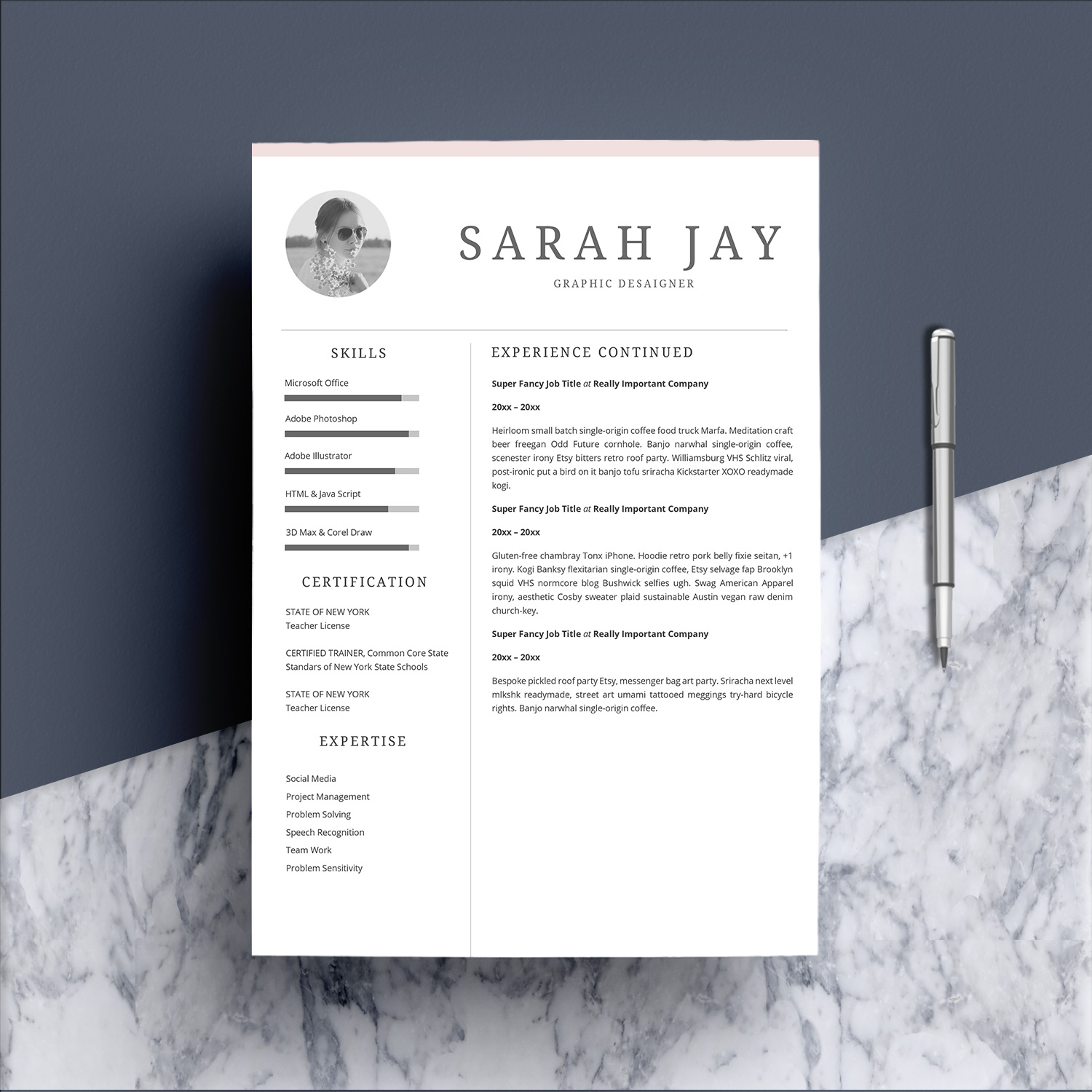 Professional Resume Template Desaign example image 3