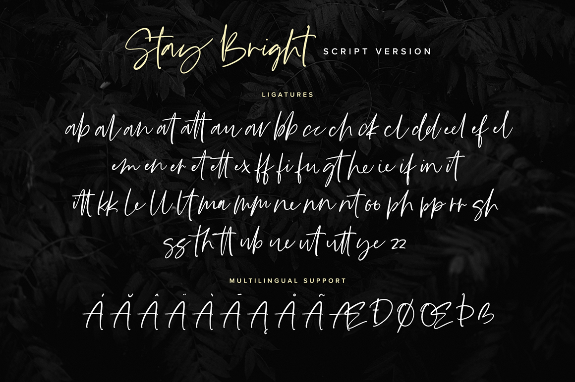 Stay Bright Font Duo example image 9