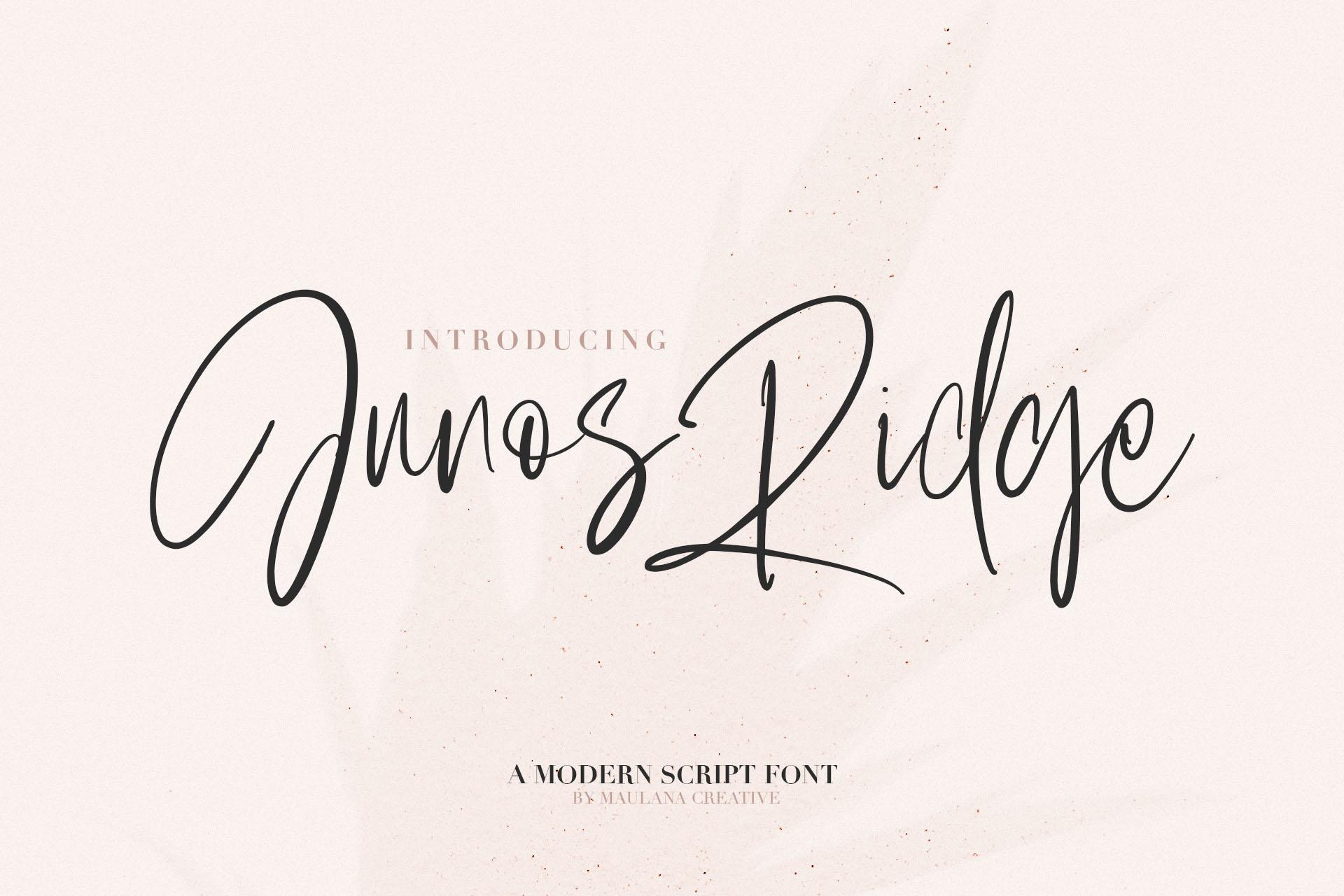 Junos Ridge - Handwritten Brush Font example image 1