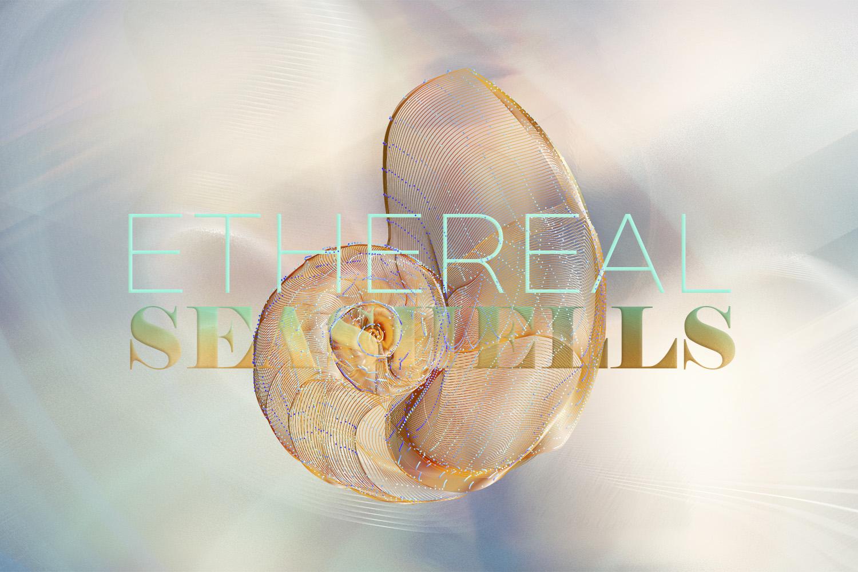 Ethereal Seashells example image 2
