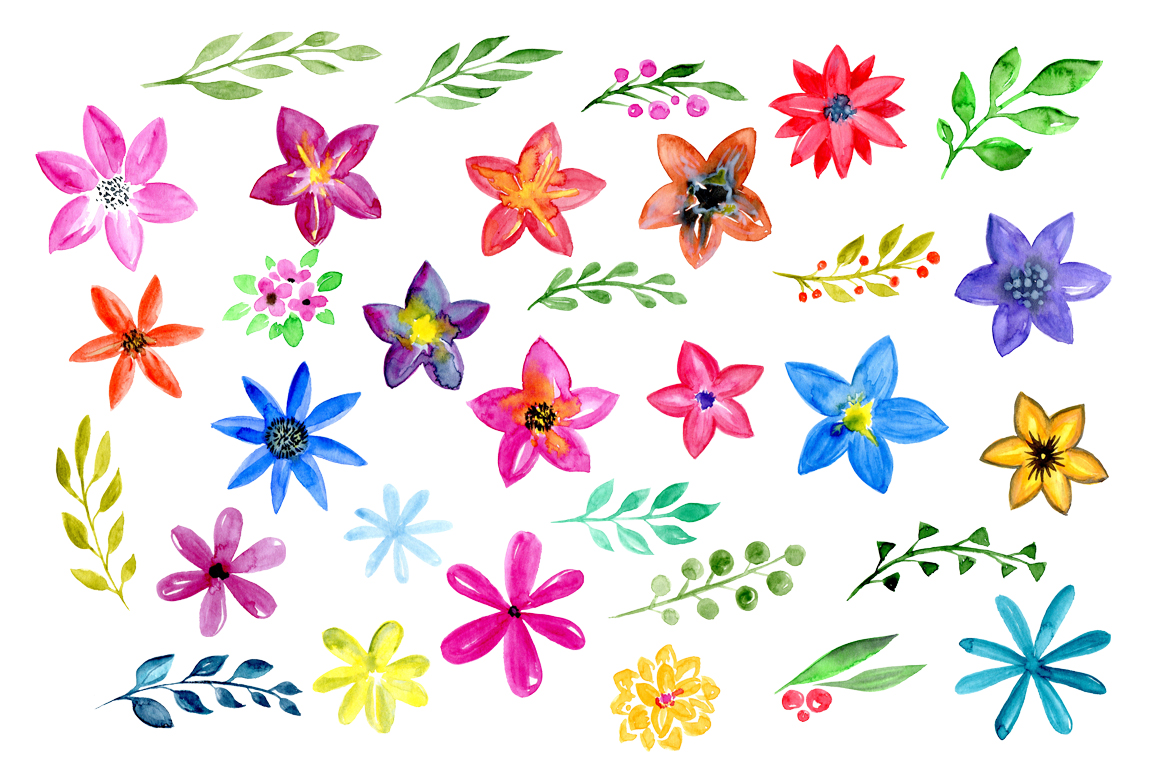 32 Watercolor floral elements: flowers, leaves example image 3