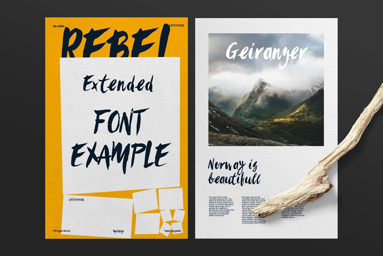 Sanös Extended Script Font example image 5