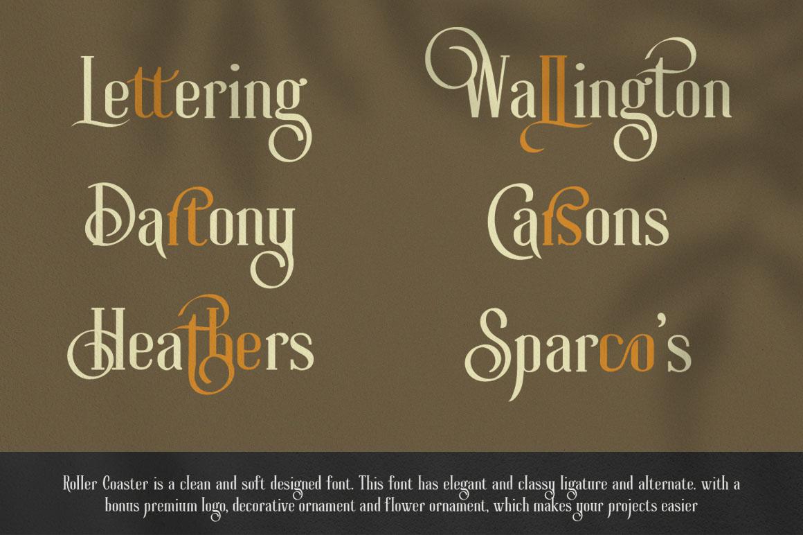 Roller Coaster Elegant Serif Extra example image 7
