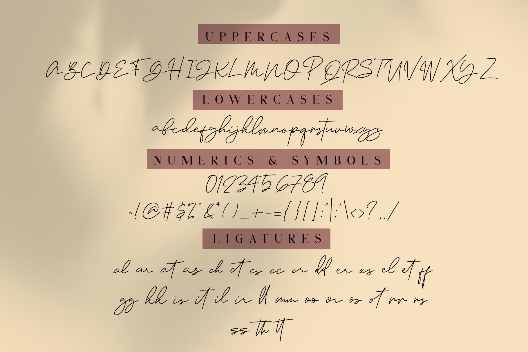 Janethville - Signature Font example image 7