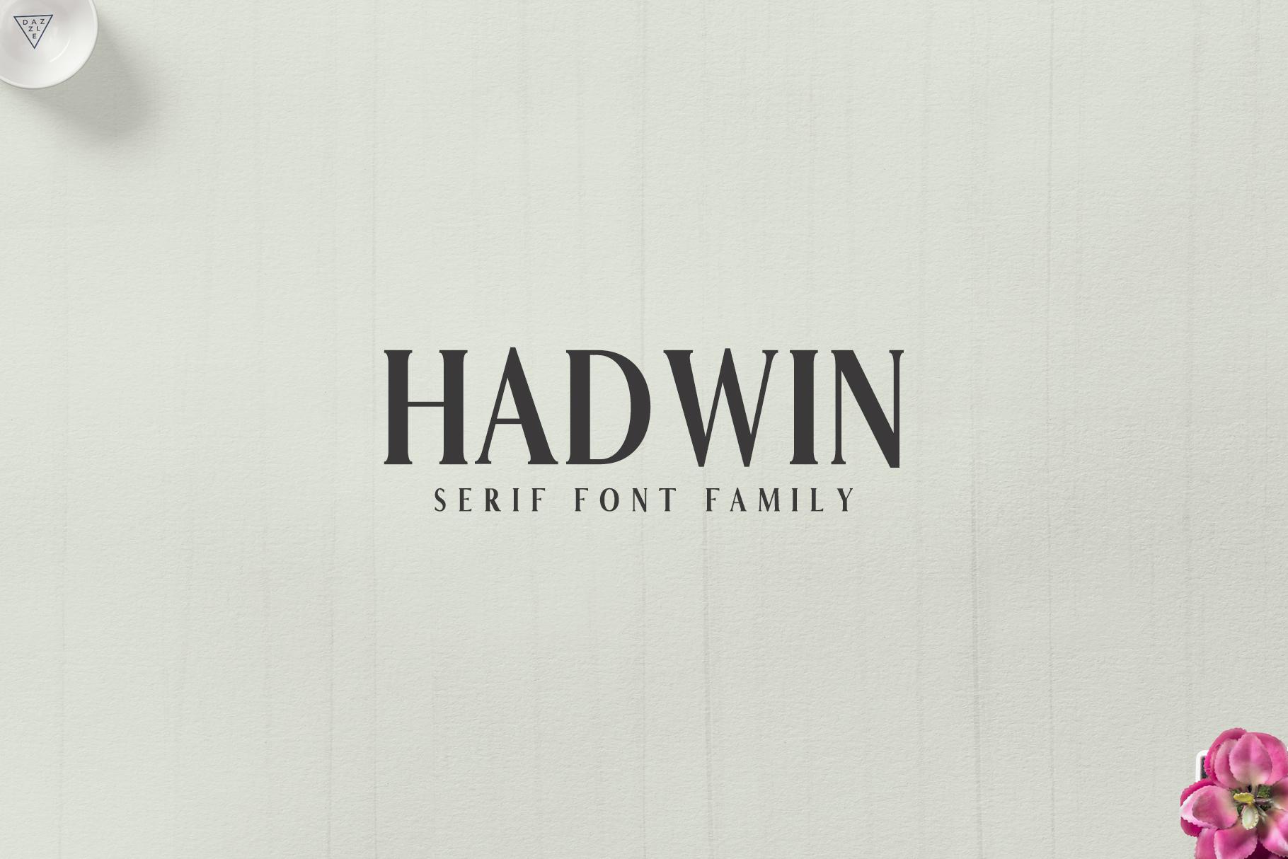 Hadwin Serif Typeface example image 1
