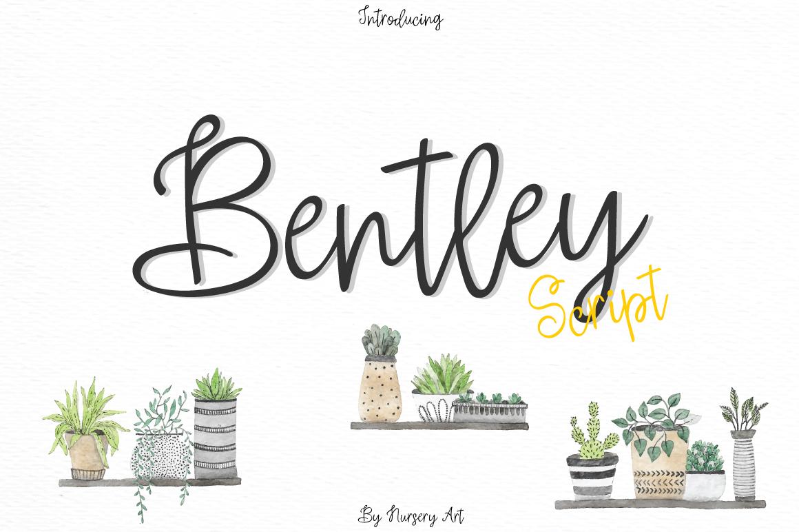 Bentley example image 1