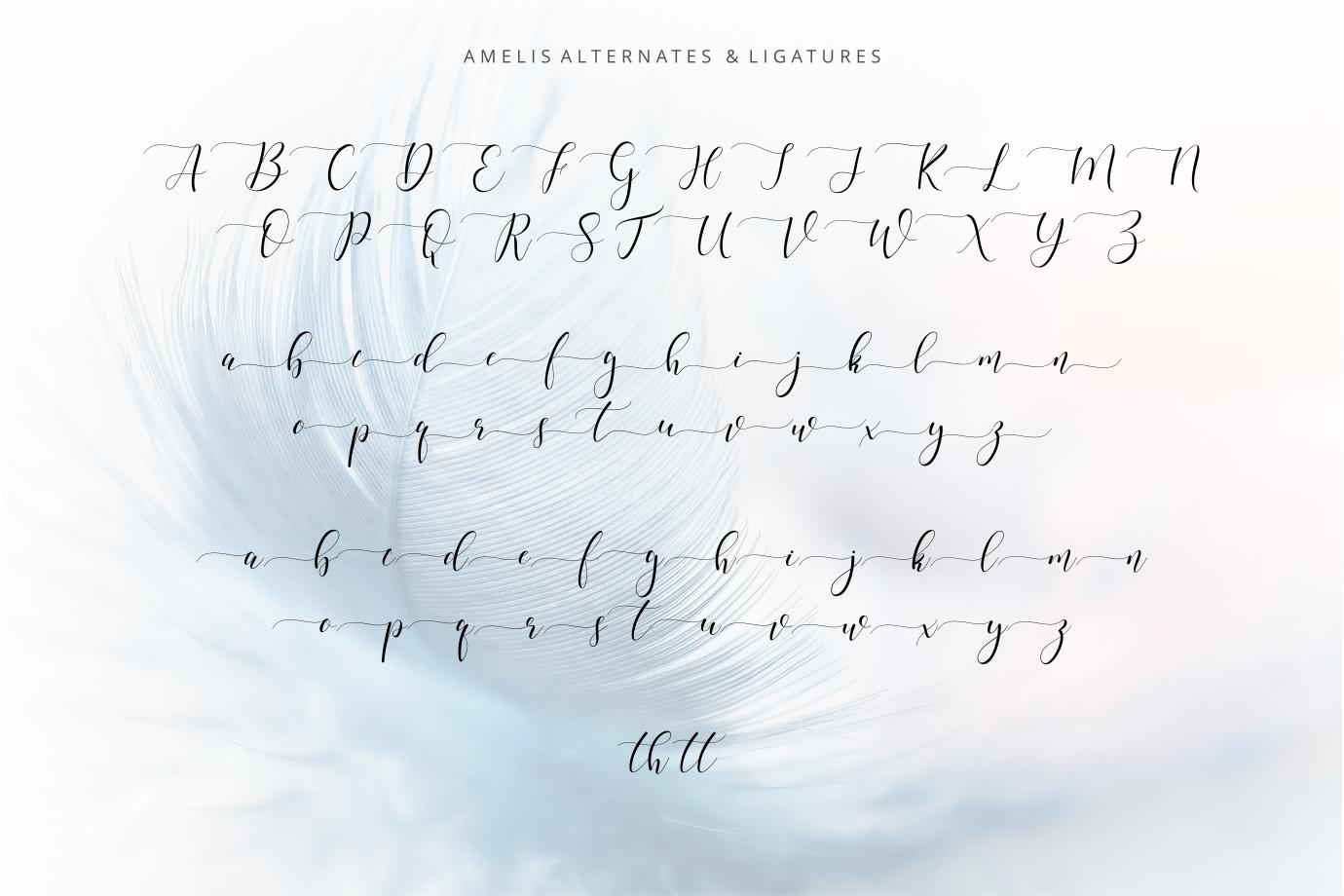 Amelis  example image 6