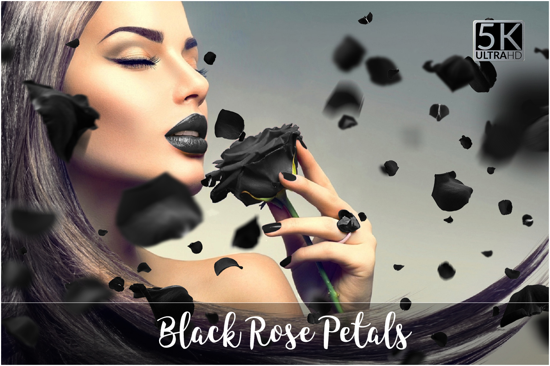 5K Black Rose Petals Overlays example image 1