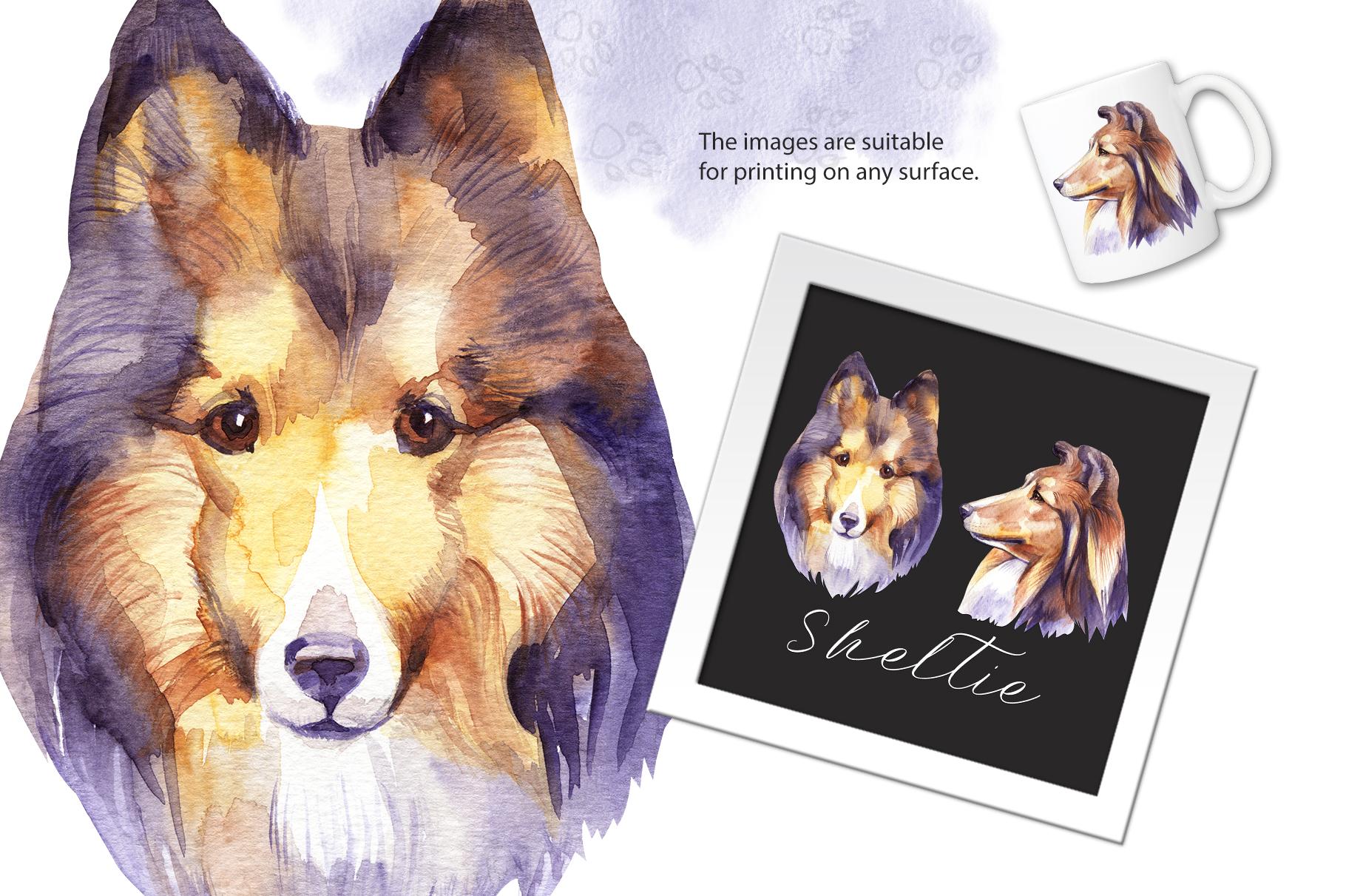 Watercolor dog - Sheltie example image 2