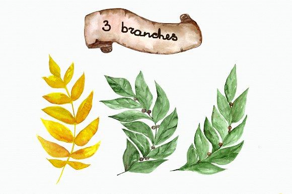 Watercolor Laurel Clip Art Set example image 2