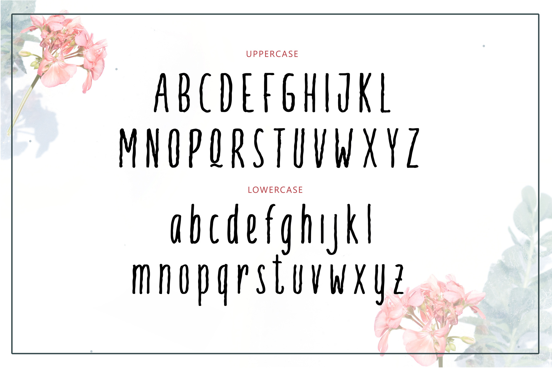 Palamia Handwritten Font example image 3