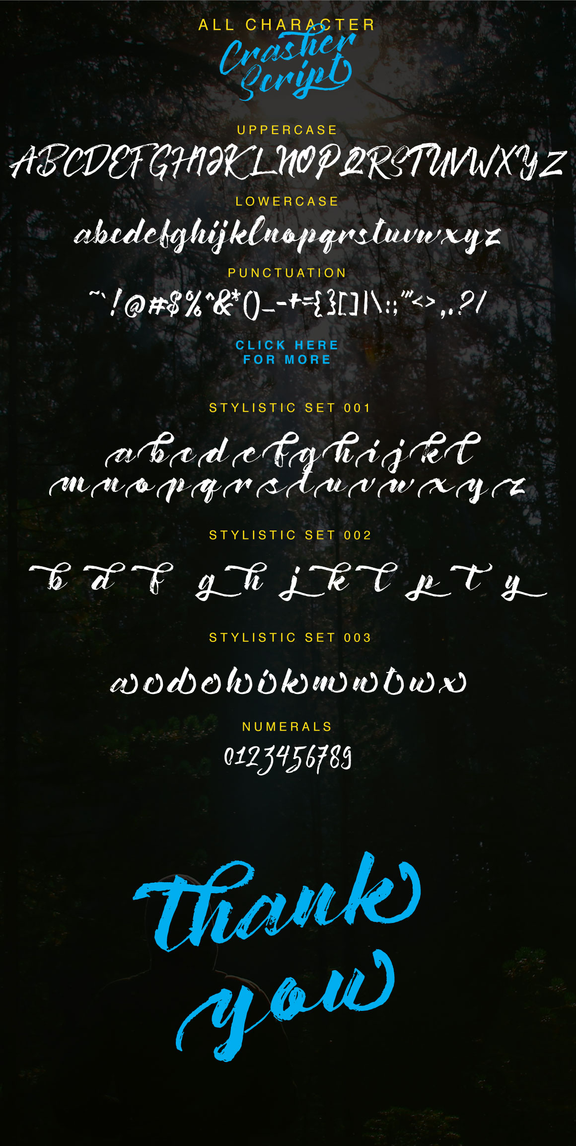 Crasher Script example image 3