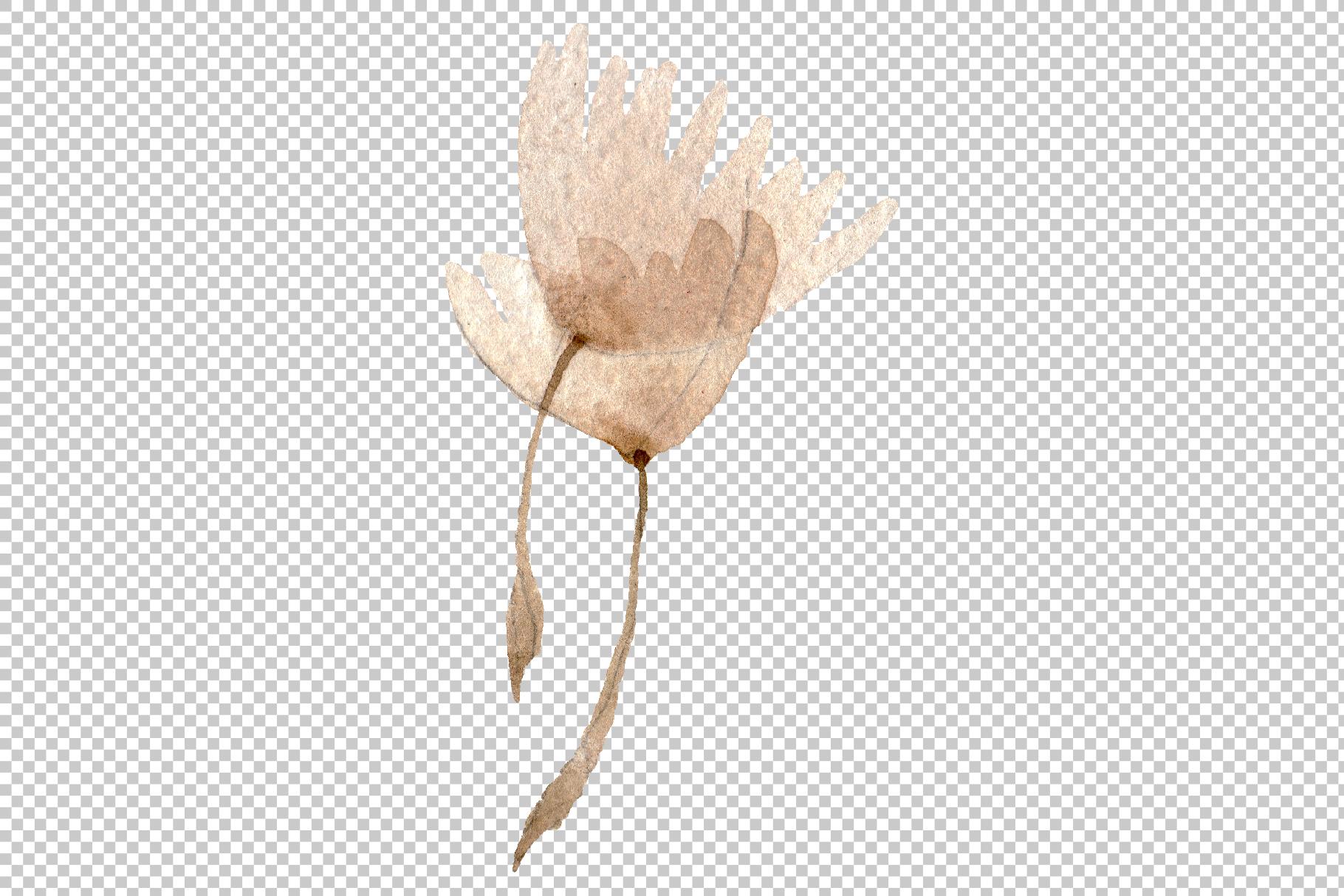 Dandelion Watercolor png example image 3