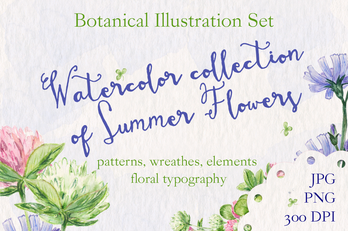 Watercolor collection of summer flowers example image 1